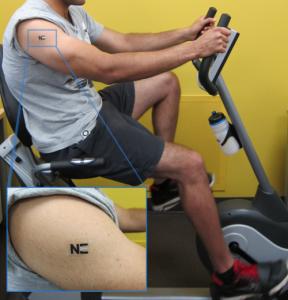 tattoobiobat (1)