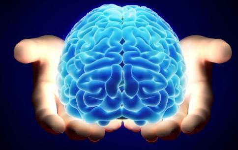 المجتمع العلمي المغربي: التحكم في الدماغ بواسطة الضوء