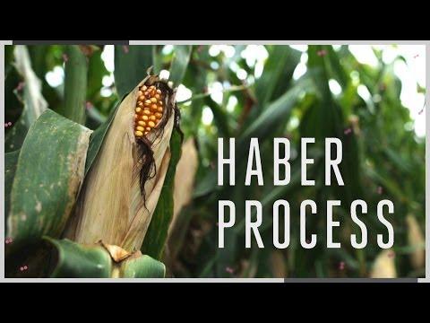 هابر,التفاعل الكيميائي