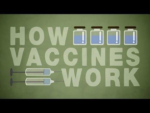 اللقاحات