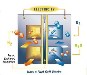 fuel cell1
