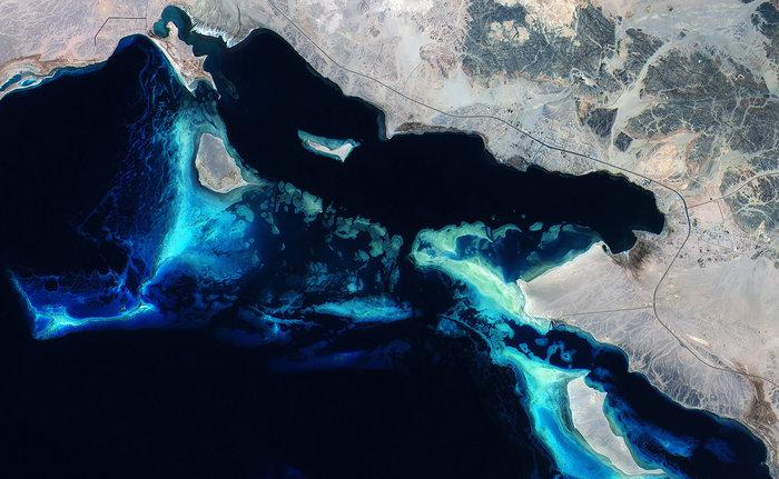 صورة للشعاب المرجانية
