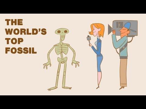 كيف تحول نفسك إلى أحفوري