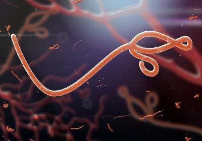 Ebola2-e1414411723680